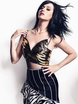 katy-perry-january-3-s2